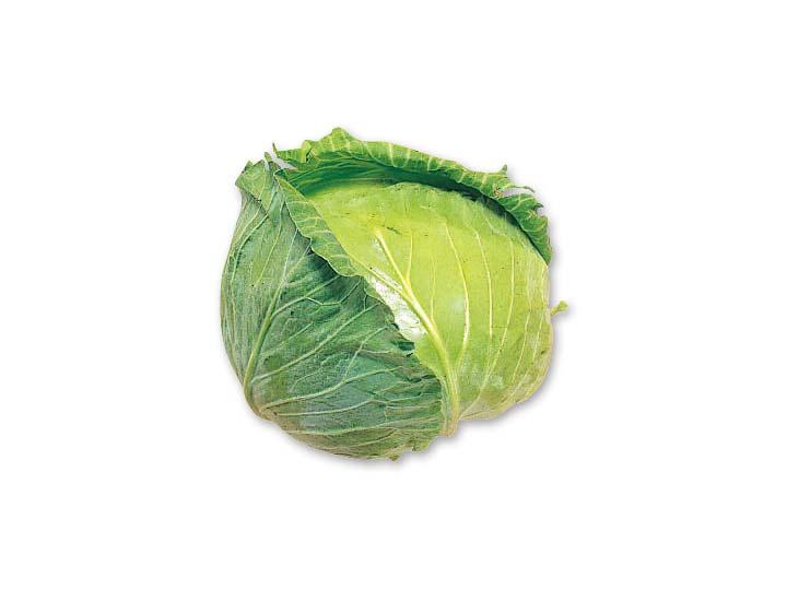 キャベツ 1コ | 有機野菜や自然...