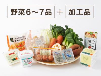 定期ボックス・旬野菜たっぷりコース写真